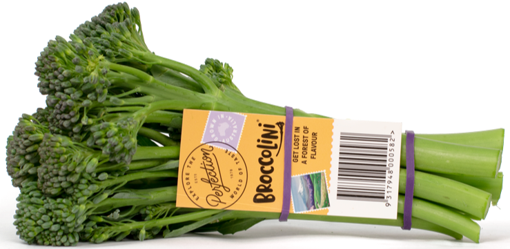 Perfection Fresh Broccolini Bunch